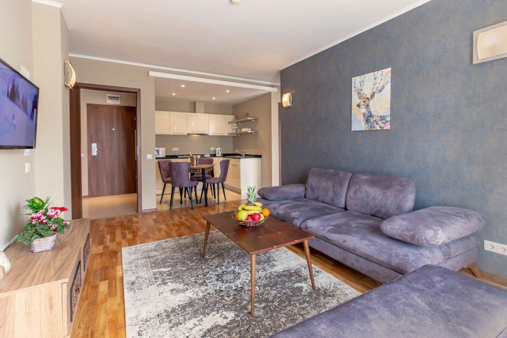 1-bedroom apt. livingroom 1