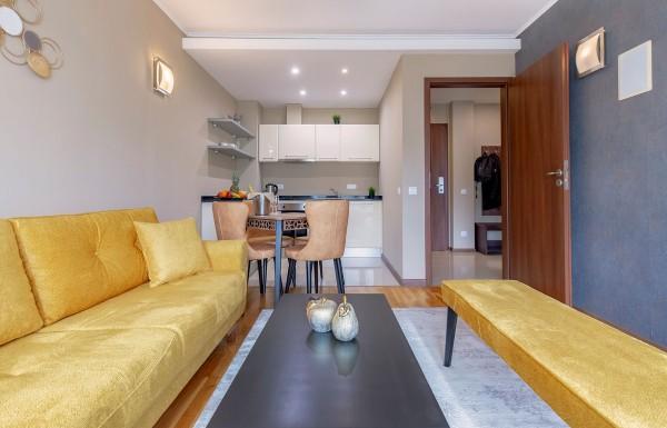 1-bedroom apt. livingroom 10